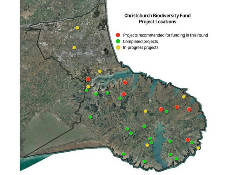 CHCH Biodiversity Projects