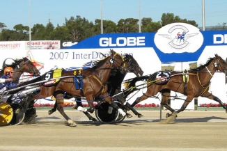 800px Harness Racing Pacers1