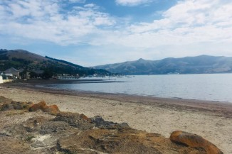 Beach in Akaroa