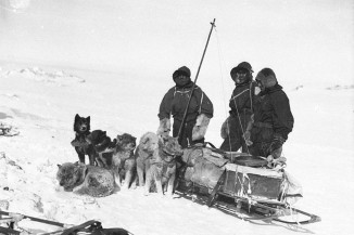 Dogs and their Antartica Explorers