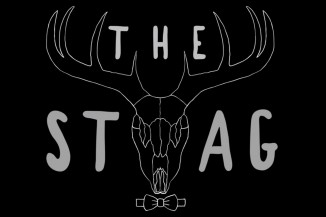 The Stag Image