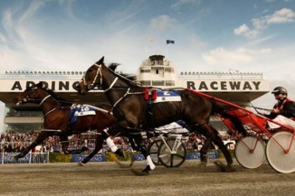 addington raceway horse christchurch canterbury racing getty